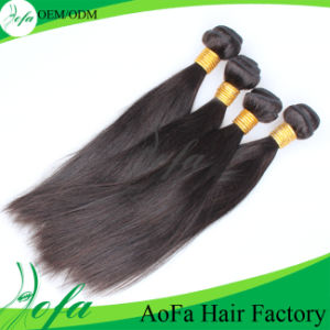 Top Quality Straight 100% Virgin Wet and Wavy Human Hair pictures & photos