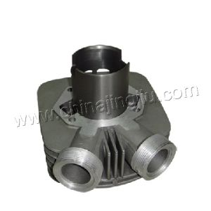 Motorcycle Cylinder Block (VOSHOD) pictures & photos