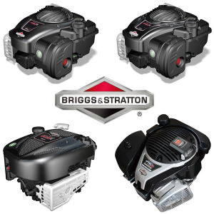 """18"""" Hand Push Lawn Mower with Briggs&Stratton Engine pictures & photos"""