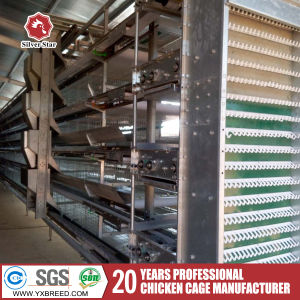 Best Labor Saving Layer Cage for Hot Sale pictures & photos