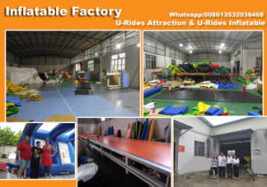 Commercial inflatable water slide, inflatable slide with small pool, inflatable bouncy slide for sale pictures & photos