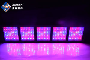 Hot Full Spectrum LED Grow Light 1600W for Mdical Plant pictures & photos