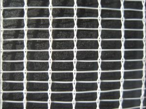 Interweave Anti Hail Guard Net for Greenhouse pictures & photos