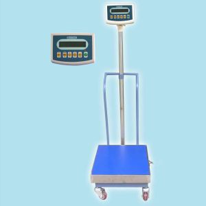Mobile Weighing Platform Scale (LWS)