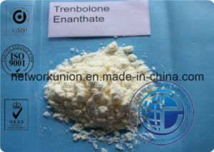 Injectable CAS 10161-33-8 Trenbolone Enanthate 100mg/Ml Recipes / Parabolan Steroid Liquid for Man pictures & photos