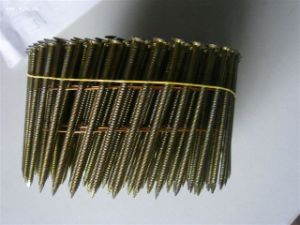 Ring Shank Coil Nail with Big Head