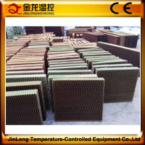 Jinlong Brand Corrosion-Resistant Evaporative Cooling Pad for Greenhouse Cooling pictures & photos