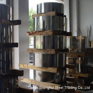 Competitive Stainless Steel Strips (304L) pictures & photos