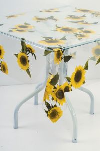 printed clear PVC table cloth pictures & photos