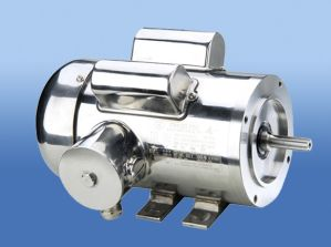 NEMA Stainless Steel Motor pictures & photos
