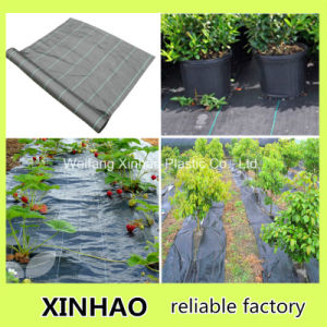 80g Weed Control Fabric for Japan pictures & photos