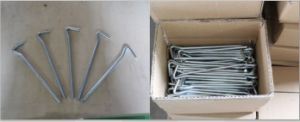 Galvanized Camping Tent Pegs pictures & photos