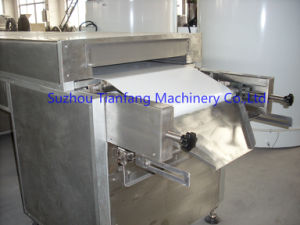 Chocolate Coating Machine (TTYJ800) pictures & photos