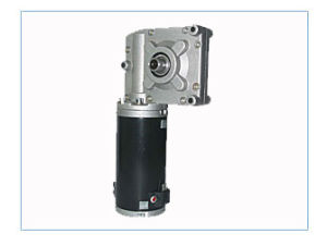 Worm Gear Motor (73ZTJ-01) pictures & photos