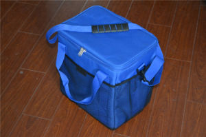 Outside Insulated Picnic Ice Bag, Camping Cooler Bag