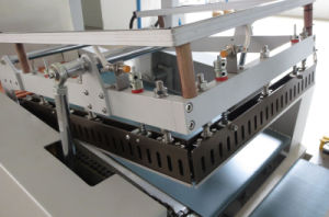 Automatic Food Shrink Wrapper Machine pictures & photos