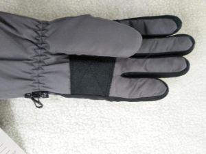 Adult Ski Glove/Adult Winter Glove/Winter Bike Glove/ Bike Glove/Detox Glove/Eco Finish Glove/Oekotex Glove/Touch Screen Glove/Waterproof Glove pictures & photos