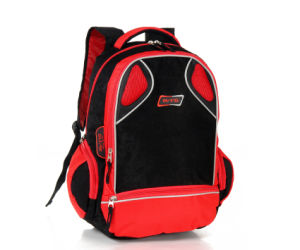 Fashion Sports Backpacking Bags (BF15110) pictures & photos