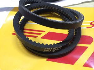 Raw Edge Cogged V Belt with Teeth for Ruaain Federation pictures & photos
