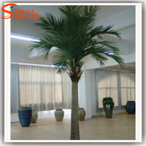 Indoor Decoration Artificial Fake Mini Coconut Plant Tree pictures & photos