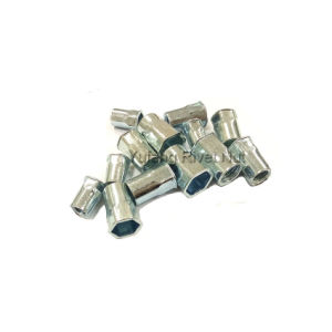 Carbon Steel Small Head Inside and Outside Hexagonal Rivet Nut pictures & photos