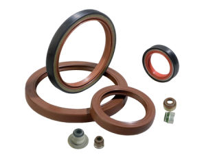 HNBR FPM NBR Silicone Oil Seal Rubber Seals Single Lip Oil Seal pictures & photos
