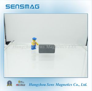 Strong Powerful Permanent Ferrite Magnet for Motor pictures & photos