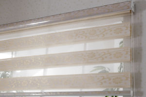 Jacquard Fabric Manual Chain Control Zebra Blinds Dual Sheer Shades pictures & photos