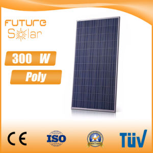 Futuresolar 300 W Solar Sun Panel for Home Solar Station pictures & photos