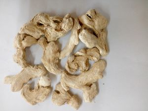 Dried Ginger Health Food pictures & photos