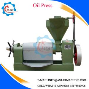 Screw Type Rice Bran Soybean Oil Press pictures & photos
