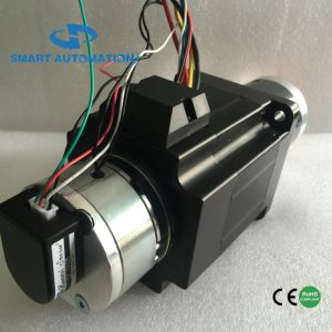 62plg. 86bl High Power Planet Gearbox Brushless DC Motor pictures & photos