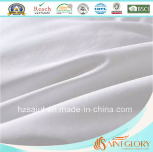 High Quality Down Blanket White Goose Feather and Down Quilt pictures & photos