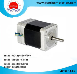 42bl3A45 DC Motor Electric Motor Low Voltage DC Motor pictures & photos