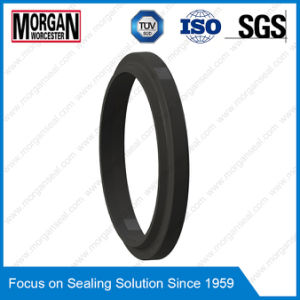P1 Profile NBR/FKM hydraulic Cylinder Rubber Dust Seal Ring pictures & photos