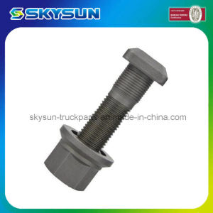 High Quality Wheel Stud Bolt with Nuts for Scania (0295953) pictures & photos