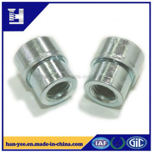 Steel/Brass Round/Hex Step Fastener for Pipe pictures & photos