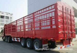 W 2.55m, H2.2m Van Type Container Semitrailer pictures & photos