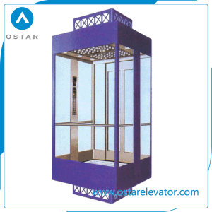 800kg 1.0m/S Square, Round Shaped Panoramic Lift, Observation Passenger Elevator pictures & photos