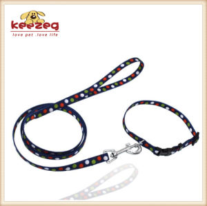 Quality Nylon Transfer Printing Dog Cat Collars& Leashes (KC0100) pictures & photos