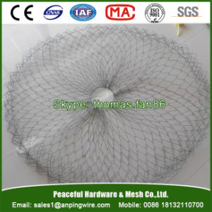 Wire Tree Rootball Mesh Basket for Tree Transplant pictures & photos
