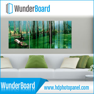Microtec Newest Popular HD Sublimation Photo Panel pictures & photos