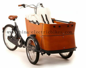 Denmark Electric Cargo Bikes 4 Kids Seats (DT-018-A) pictures & photos