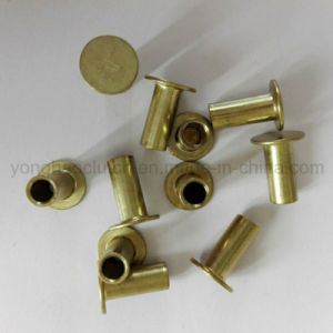 Zinc Plated Semi Hollow Brake Lining Rivets L10 6X16mm pictures & photos