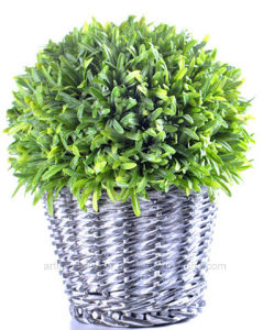 Different Artificial Plants in The Rattan Basket for Indoor/Outdoor Decoration pictures & photos