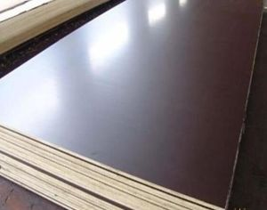 Film Faced Poplar/Birch/Eucalyptus Combi Plywood for Building pictures & photos
