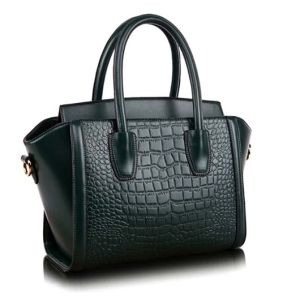 Fashion Bag Classic Wowen Handbag Crocodile Designer Hand Bag (XZ178) pictures & photos
