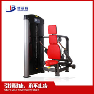 Triceps Press Exercise Machine/Gyms (Bft 3008) pictures & photos