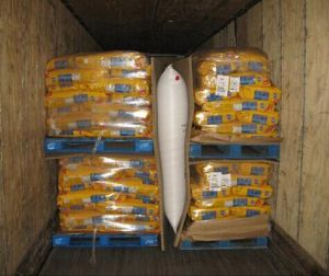 AAR Approved PP Woven Dunaneg Bags for Containers pictures & photos
