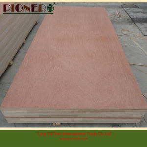 2.5mm-18mm Bintangor Plywood Panel for Decoration Purpose pictures & photos